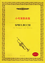 大师·琵琶(CD)